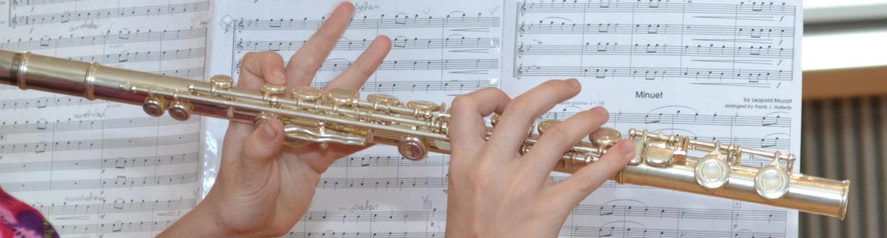 Musikverein Harmonie Dannstadt e. V.